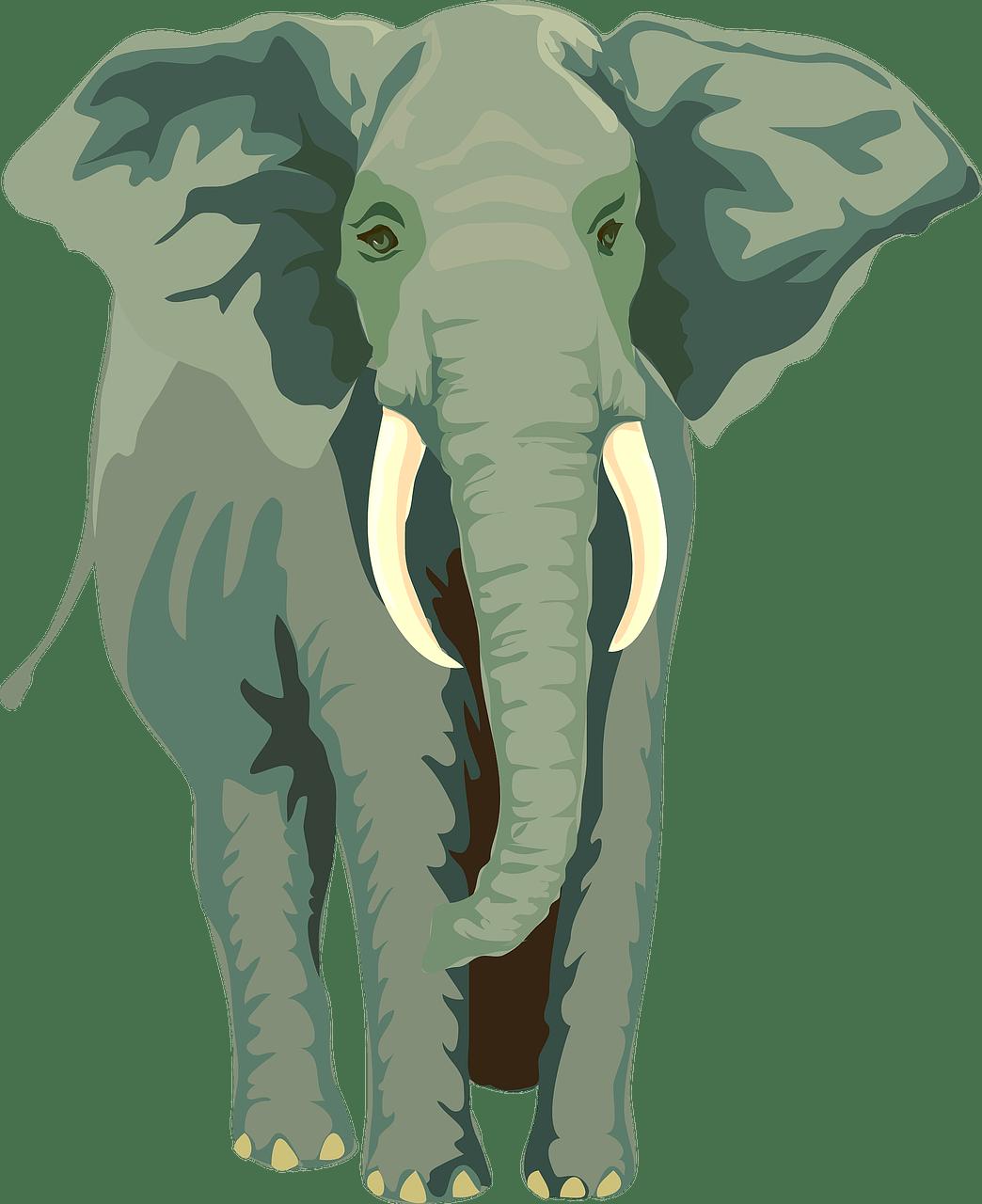 dessin d'un éléphant