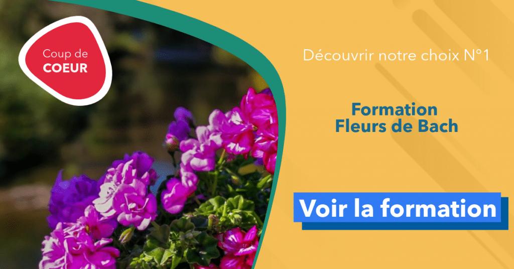 formation fleurs de bach