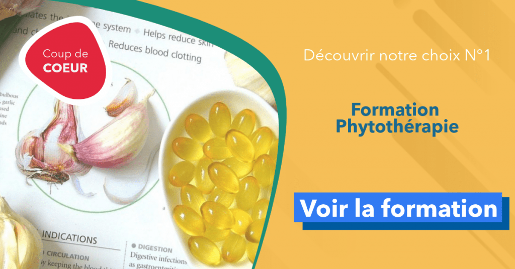 formation phytothérapie